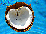 Coconut Heart Inspirational Photo